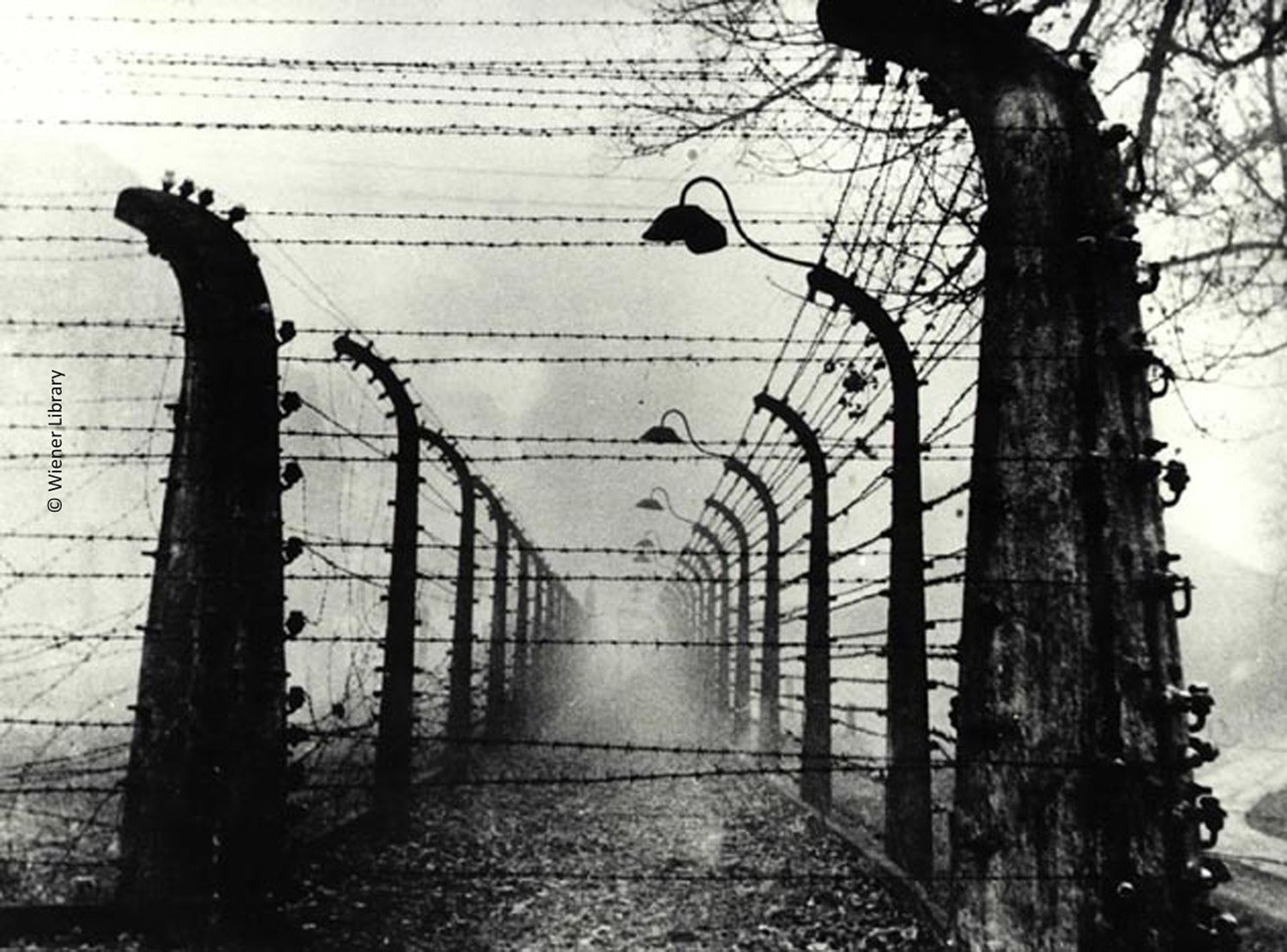 Barbed wire fences outside the mist-covered Auschwitz concentration camp